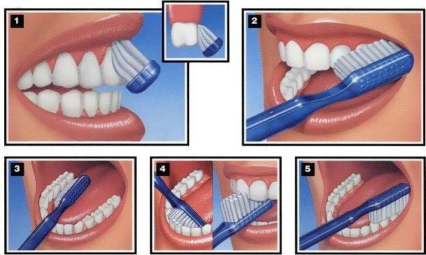 Visit DentalCare.com to learn more about manual brushing.