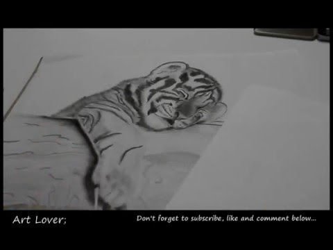 Siberian Tiger Cub Drawing... The Finishing Touches