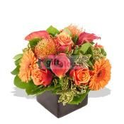 Send Flowers to UK only form giftblooms.com.Send flowers Uk and Internationally only from our online site.