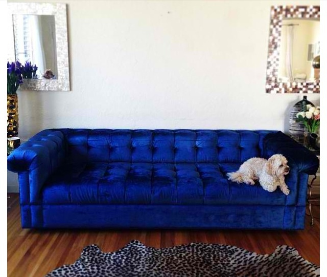 Love the blue couch bear cave ideas pinterest blue couches couch and blue - Royal blue living room ...