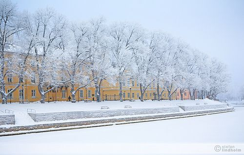 Winter in the city by Fi20100, via Flickr