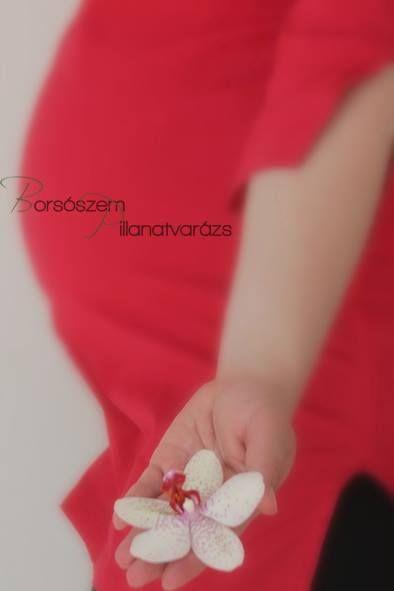 Kismama / pocakfotó Pregnancy photography