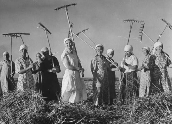 Russian women gathering hay on a collective farm. Photographed by Margaret Bourke-White, 1941