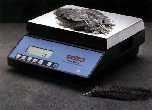 Quick Count 1kg/2.2lb x .01g Hi Resolution Digital Counting Scale by Setra. $1399.00. Setra Counting Scales provide excellent value in high accuracy, easy to use digital counting scale. The Setra Quick Count Digital Counting Scale incorporates high resolution weighing and counting accuracy into an easy to use, six key format providing the features needed for most counting applications. The simple six key design allows the user to master scale operation in minutes,...
