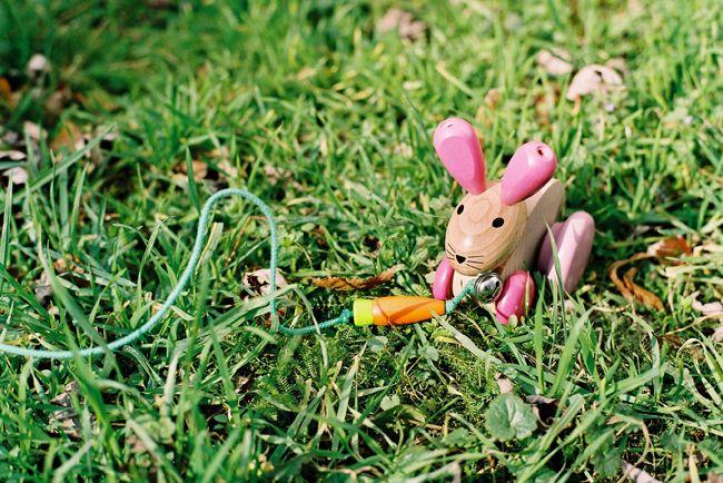 Ružový zajko na ťahanie