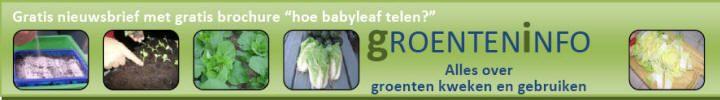 Teeltschema's voor de groenteteelt en de moestuin, wanneer zaaien, planten en oogsten?