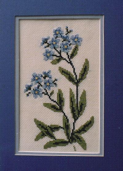 Forget Me Not Cross Stitch Kit-Sandra Greba
