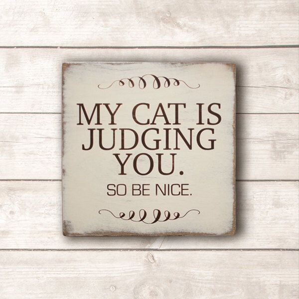 Funny Cat Sign; Cat Wood Sign; My Cat is Judging You So Be Nice Wood Sign; Cat Lovers Sign; Cat Person Sign by KokuaDesign on Etsy https://www.etsy.com/ca/listing/517443985/funny-cat-sign-cat-wood-sign-my-cat-is