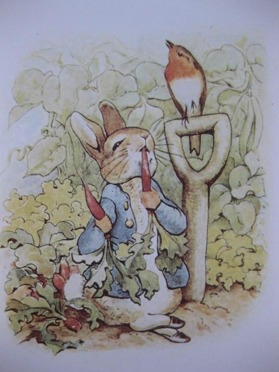 Yes I like carrots, vintage Beatrix Potter postcard.