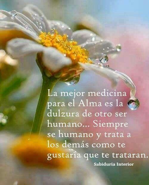 Medicina para el alma...