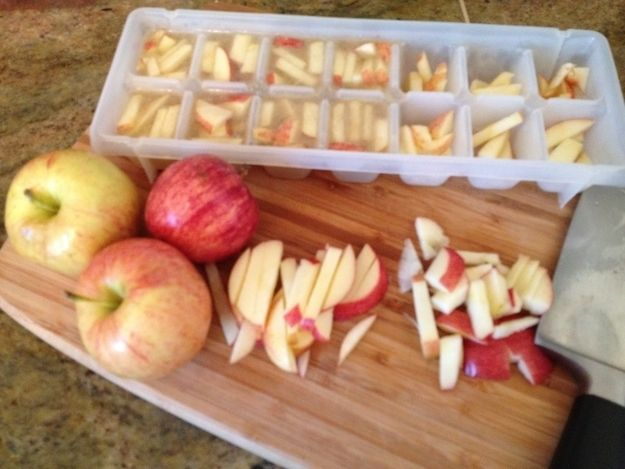 Easy frozen treat for pups! Apple slices frozen in an ice cube tray with chicken broth