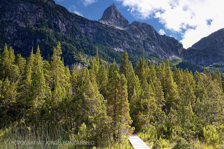 Pico de las Sombras - Parque Tagua Tagua (Patagonia - Chile)