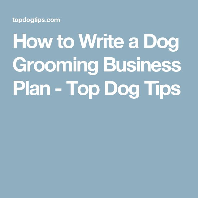 How to Write a Dog Grooming Business Plan - Top Dog Tips
