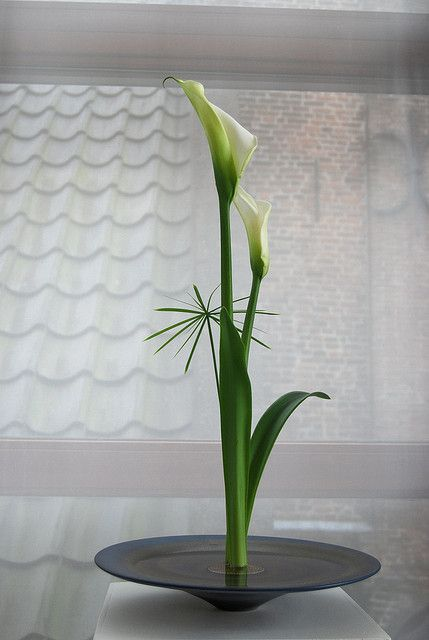 Ikebana by Kitty van Leeuwen by Otomodachi, via Flickr