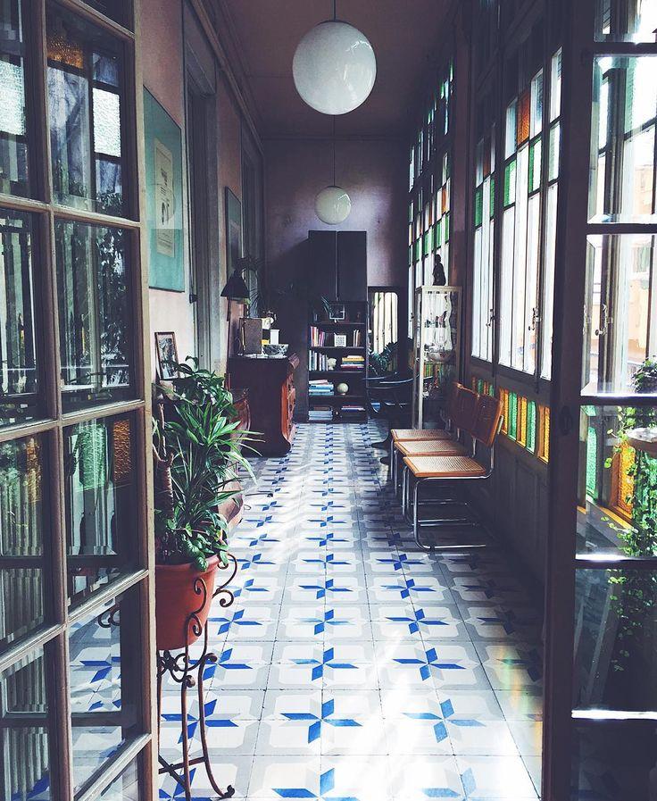 Best 20 atrium garden ideas on pinterest for Atrium garden window