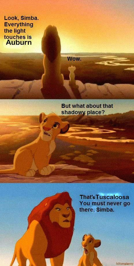 I knew Mufasa was wise.: So Funnies, Bays Area, Chapel Hill, The Bays, So True, Lion King, Funnies Stuff, San Francisco, True Stories