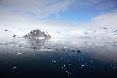 Visit Antartica    Neko Harbour, Antarctica (by Kate McKenna)
