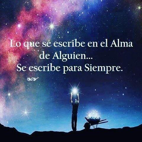 Buenas noches amig@s!!⭐️
