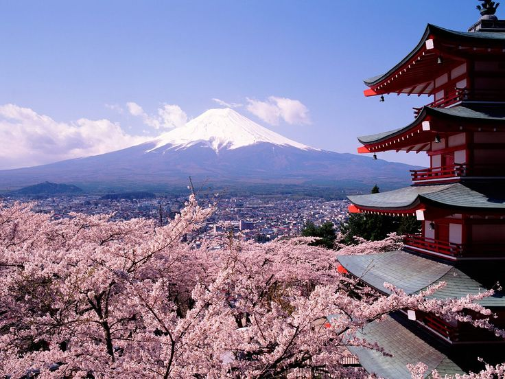 Mt. Fujiyama, Japan. Cherry blossoms, azaleas, rice paddies, pagodas and kimonos.