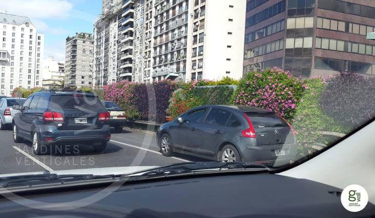 Jard n vertical realizado por un alumno de paisajismo - Paisajismo urbano ...