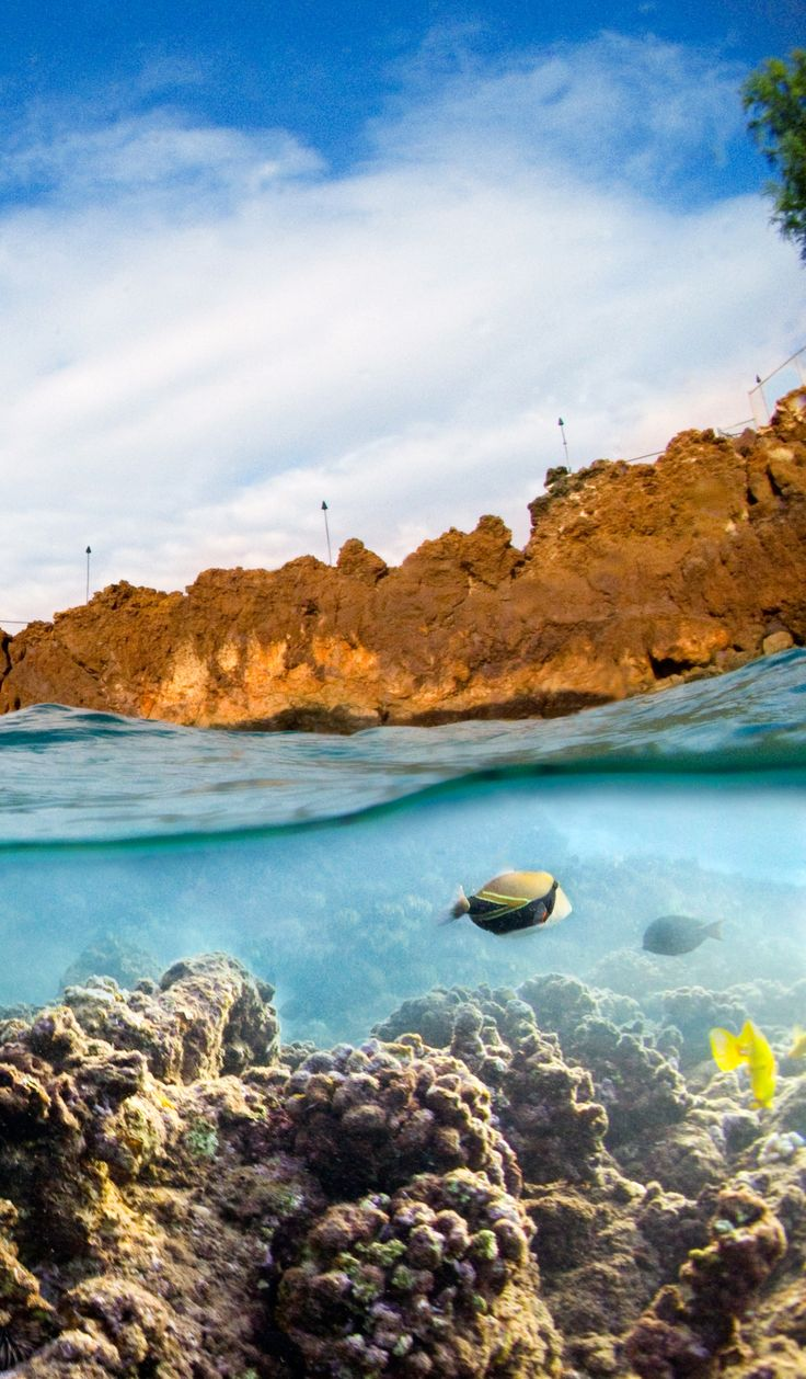 Maui Hawaii 2037 best Hawaii Vacation