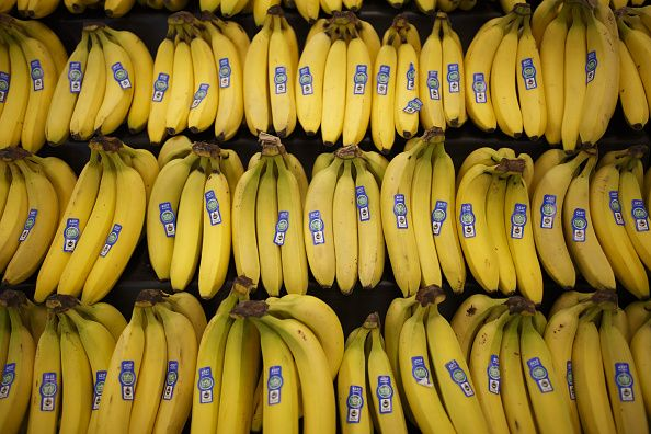The failure to diversify makes the world's favorite fruit vulnerable to a wipeout.The bananapocalypse is coming. That's the likelihood that sometime in the next decade, bananas may disappear, victims of a fungal pathogen known as Panama Disease. The disease is on the march throughout the world, threa