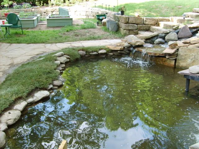 25 Best Ideas About Pond Liner On Pinterest Pond Waterfall Pond Ideas And Diy Pond