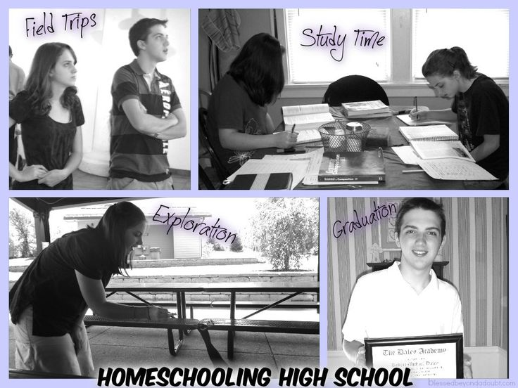 162 best images about Homeschooling High School on Pinterest