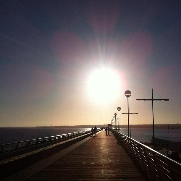 #Domingos en #Torrevieja sin editar | #Sundays in Torrevieja no edit #cielo #landscape #skyporn #sea #mar #sunsetlovers #sunsetclub #sunset #puestadesol #favourite #blue #contraluz #backlighting #azul #paisaje #noedit #golden #dorado  - @miriamsoler- #webstagram