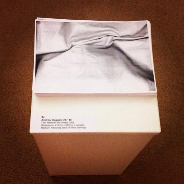 Piece currently on show at the restored Belvedere House in Dublin.  Entitled 'between the sheets', 2009, it is an exploration of a traditional area of artistic study: Folded cloth.
