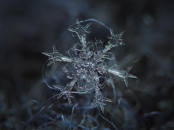 Meraviglie delle proporzioni matematiche. I cristalli di neve contengono la spiegazione dell'ordine del Cosmo. www.numerologica.it