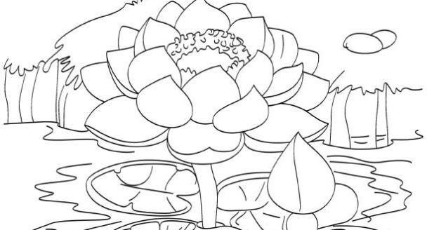 Cartoon Coloring Pages Coloring Pages Coloring Books