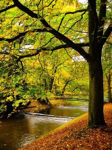 Las 100 fotos mas hermosas de la naturaleza -