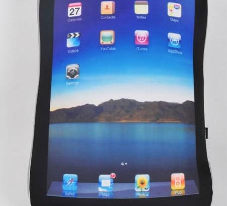 Apple iPad Cushion