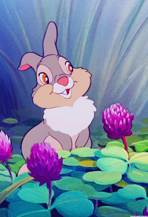 I love Thumper♡♡♡