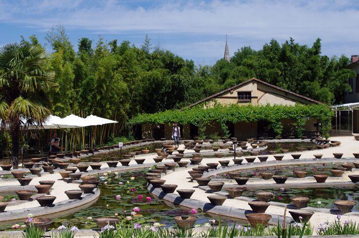 17 best les jardins de latour marliac images on pinterest - Jardin des nenuphars le temple sur lot ...