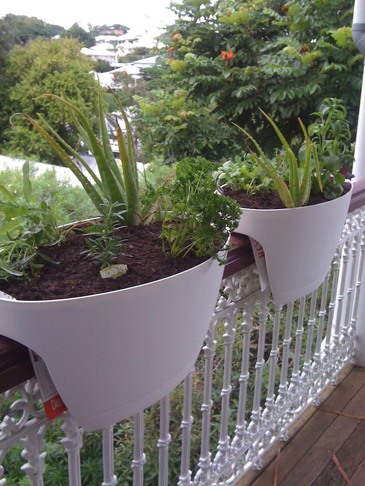 balcony herb garden. i could do this.