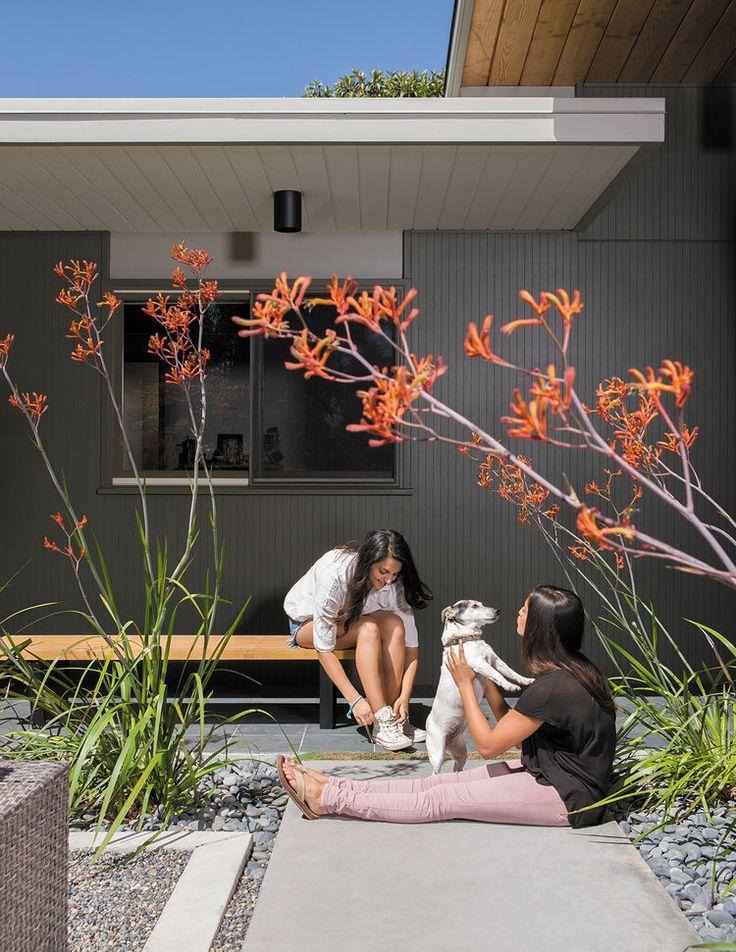 Creative Landscape Design for a Renovated Eichler in California