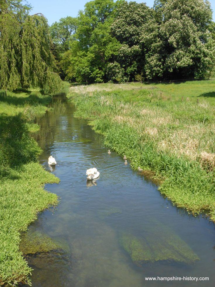 River Meon at Warnford Meon Valley