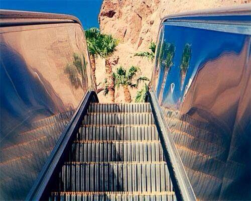 Escalator in the desert & Palm trees