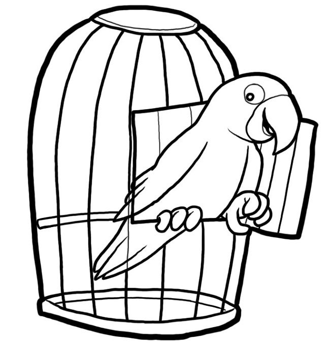 coloring pages for pets | free bird cage coloring page | Gambar