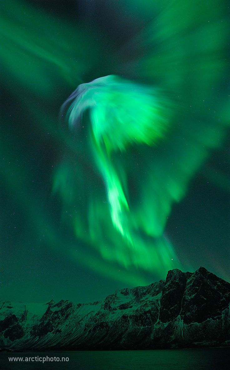 Northern Lights above Grotfjord, Norway