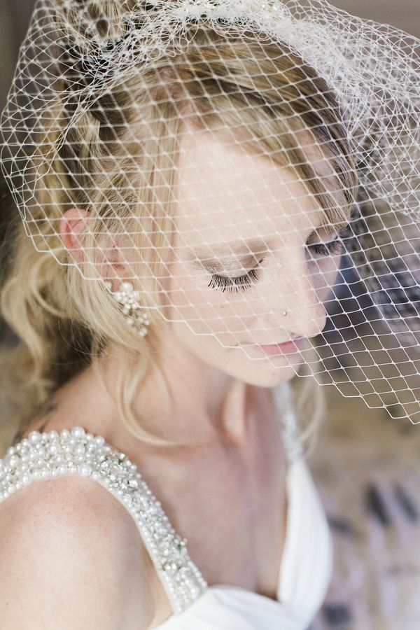 Romantic birdcage veil (Photo by Danyelle Dee Photography)