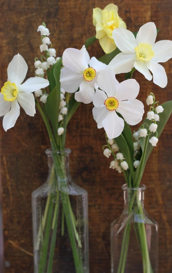 lily of the valley and daffodil posies | gardenista