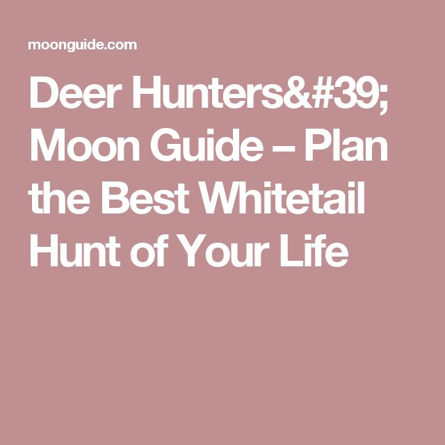 Deer Hunters' Moon Guide – Plan the Best Whitetail Hunt of Your Life