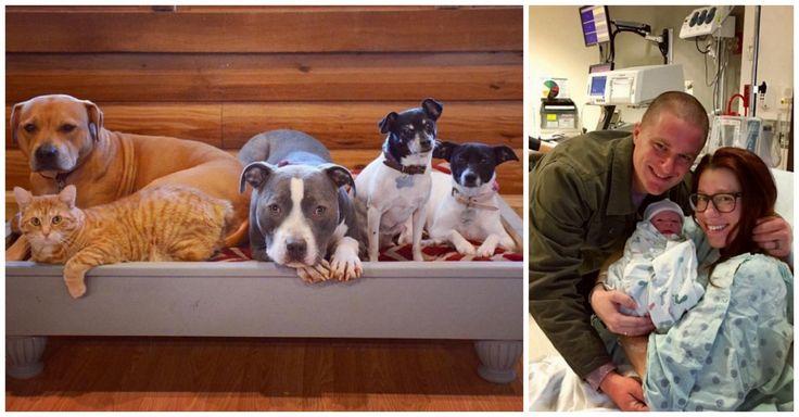 Elle s'inquiétait de ramener son bébé à la maison avec 5 animaux rescapés, mais leur rencontre l'a rapidement soulagée.
