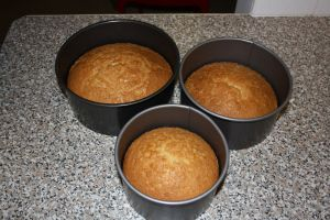 Fab Madeira cake recipe with link to alternative ingredients amounts for different sized tins :D