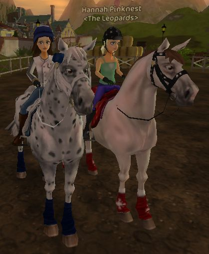 Just Joined The Leopards On Star Stable So Cool Everyone