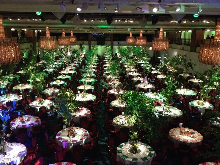 BAFTA  An enchanted forest of beech and birch trees for the #BAFTATV Awards After Party at The Grosvenor House Hotel.  #Events #Colour #FlowerDesign
