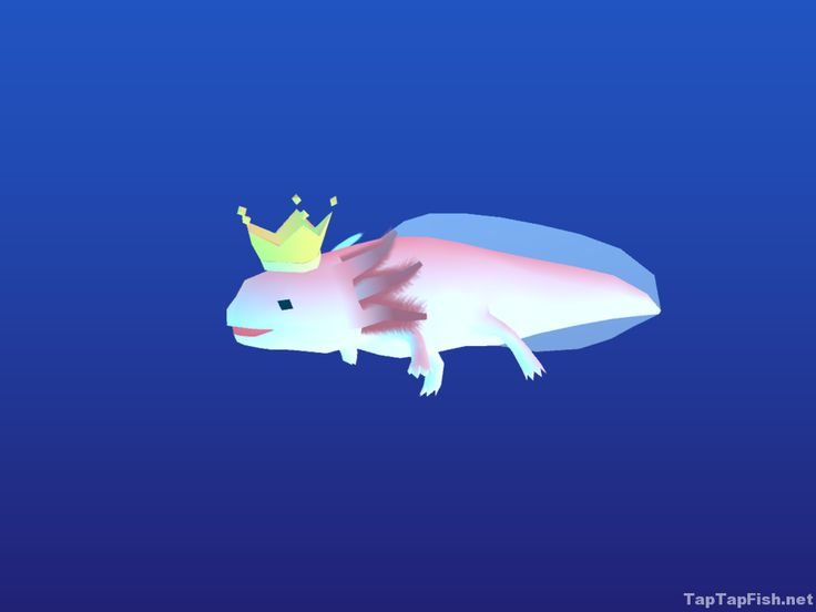 11 best tap tap fish game images on pinterest fishing for Abyssrium hidden fish guide